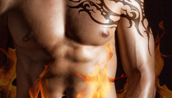 Book Spotlight: Wicked Flames by Sharon Kay