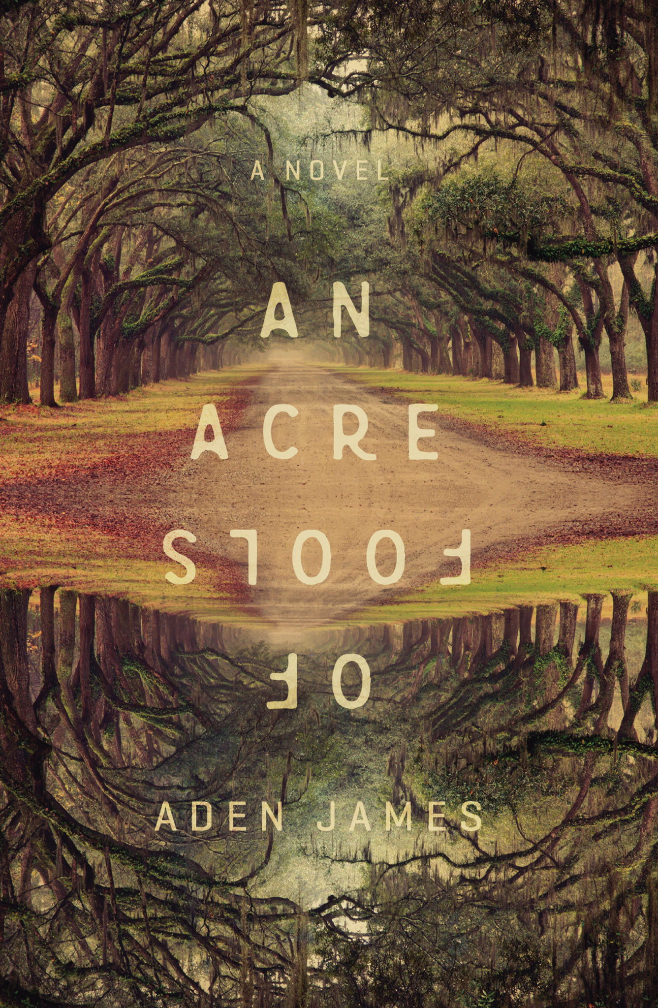 Blog Tour: An Acre of Fools